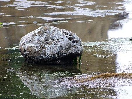 Stone, Hai Bian, Sea Water, Seaweed, We Cool, Beautiful