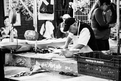 Fish Market, Market, Fish, Mussels, Cancer