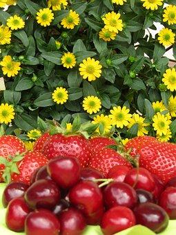 Strawberries, Cherries, Bing, Flowers, Fruit, Food, Eat