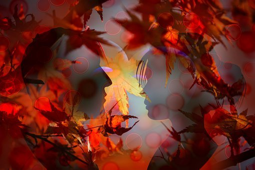 Love, Leaves, Autumn, Valentine's Day, Sunset, Lovers