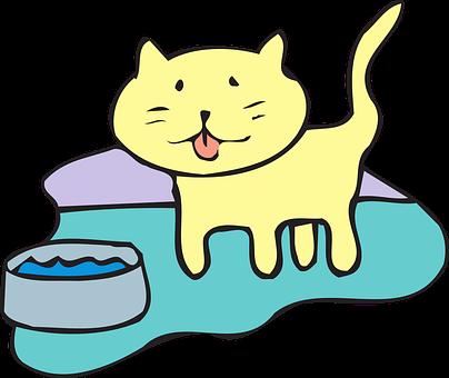 Cat, Water, Bowl, Pet, Animal
