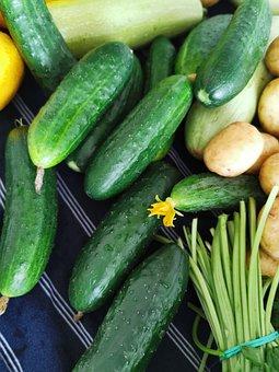 Vegetables, Cucumbers, Greens, Vegeterian, Food