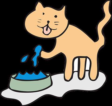 Cat, Water, Bowl, Drinking, Paw, Pet, Animal, Drink