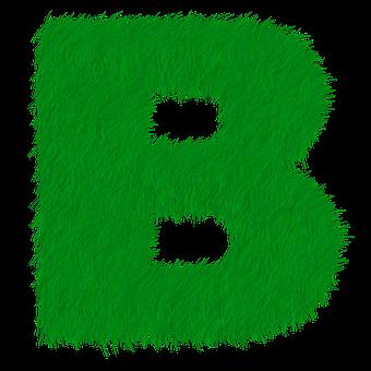Letter B, Letter, B, Alphabet, Green, Grass, Prato
