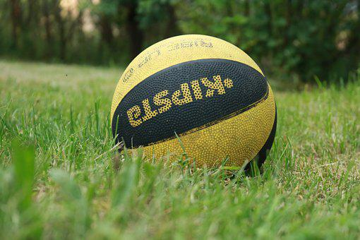 The Ball, Basketball, Grass, Sport, Play, Sports