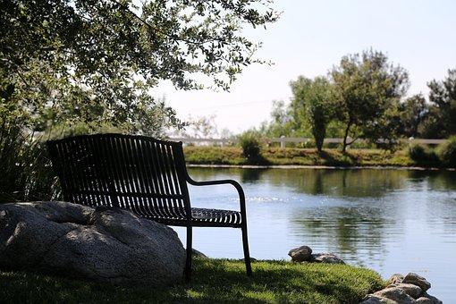 Bench, Pond, Water, Nature, Park, Lake, Landscape