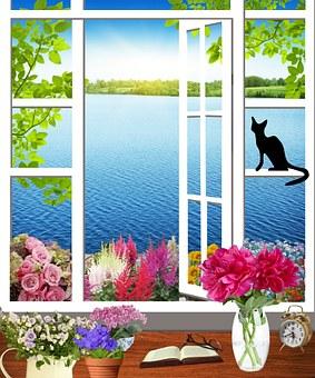 Window, Office, Flowers, Pots