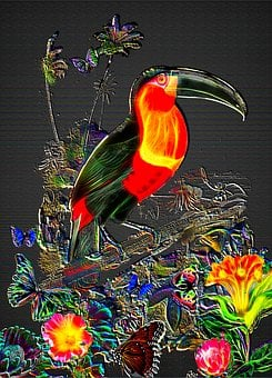 Fantasy Toucan, Jungle Background, Toucan Wall Art