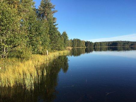 Nature, Lake, Reserve, Glaskogen, Värmland, Camping