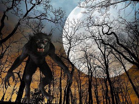Man, Wolf, Full Moon, Night, Black