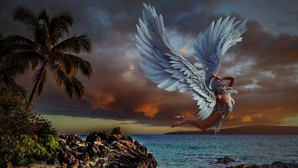 Angel, Wings, Sexy, Model, Girl, Fairy