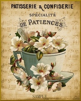 Paris, French, Patisserie, Vintage, Cup, Flower, France