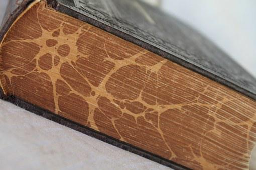 Book, Bible, Pages, Paper, Old, Holy, God, Antiquarian