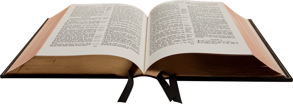 Bible, Book, Christian, Holy, Reading, Knowledge, Study