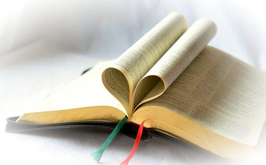 Book, Bible, Faith, Holy, Gilt Edge, Read, Christian