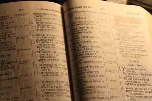 Bible, Holy Book, Study, Christian, Christianity, Jesus