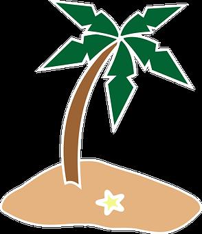 Palm Tree, Coconut Tree, Island, Starfish, Summer