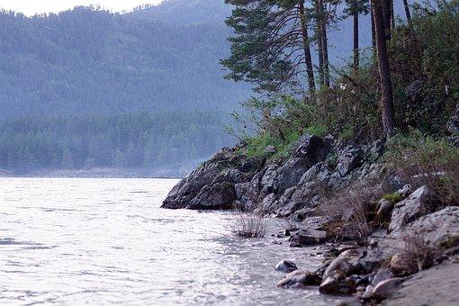 River, Forest, Katun, Siberia, Stone, Mountain, Green