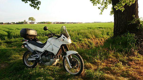 Moto, Tree, Field, Sunset, Motorcycle, Kawasaki, Kle