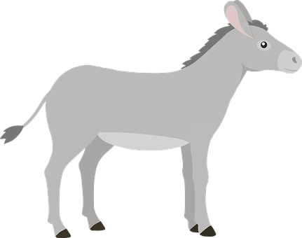 Donkey, Mammal, Animal, Domestic, Fauna, Nature