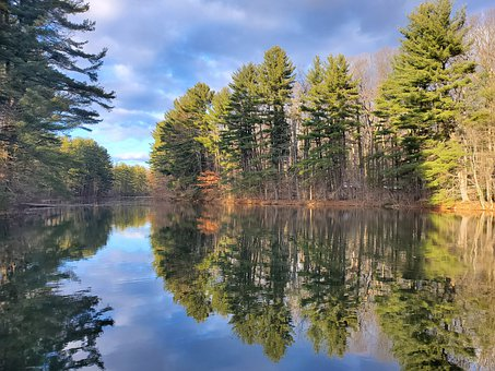 Lake In The Forest, Pond, Nature, Reflection, Clouds