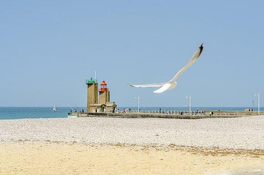 Beach, Lighthouse, Seagull, Roller, Sky, Side