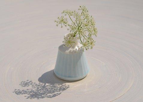 Blossom, Bloom, White, Bloom, Vase, Light Blue, Tender