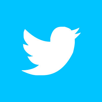 Twitter, Pin, Button, Icon, Icons, I, Vectors, Svg