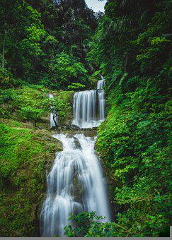 Waterfalls, Nature, Waterfall, Landscape, Cascade