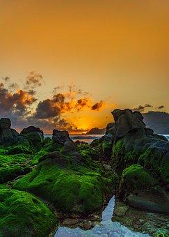 Sunset, Beach, Green, Ocean, Summer, Sea, Sky