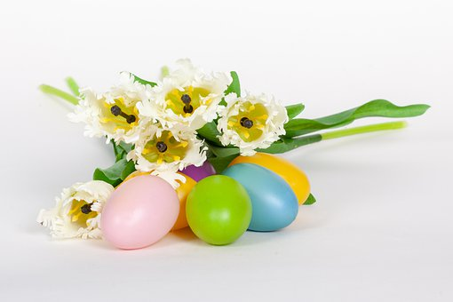 Easter, Tulips, Flowers, Egg, Clearance, Tulip, Flora
