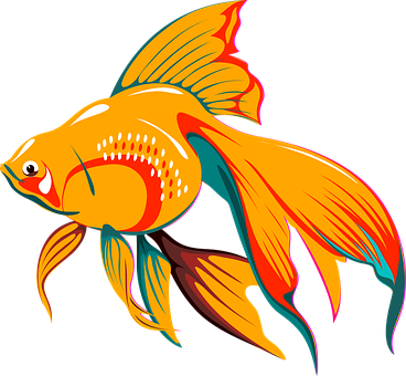 Fish, Asian, Tail, Golden, Exotic, Tropical, Fins