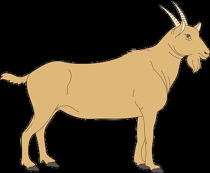 Brown, View, Barn, Farm, Goat, Side
