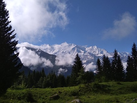 Mounting, Mont Blanc, Nature, Forest
