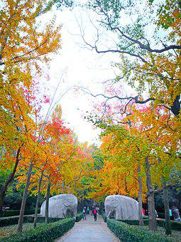 The Scenery, Autumn, Gold, Monuments