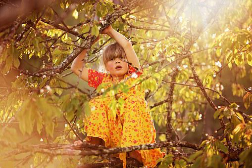 Person, Human, Child, Girl, Tree, Climb, Aesthetic, Out