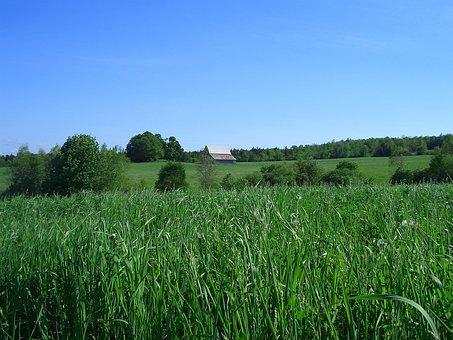 Pasture, Canada, Barn, Nova Scotia, Building, Farm