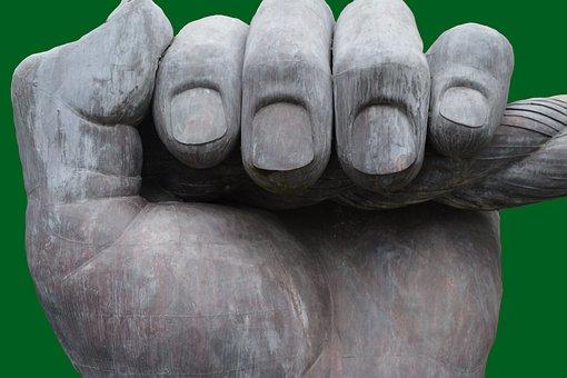 Fingers, Hand, Fist, Fingernails, Green Thumb, Palm