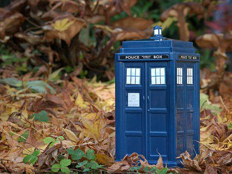 Tardis, Dr Who, Doctor Who, Undergrowth, Leaves, Time