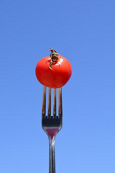 Tomato, Fork, Eat, Close, Metal Fork, Cutlery, Red