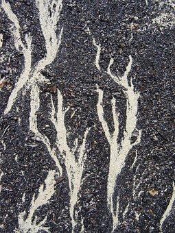 Beach, Sand, Pattern, Wind, Ground, Form
