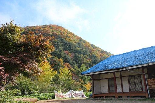 Autumn, Landscape, In Autumn, Rural Landscape