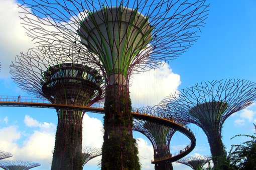Gardens By The Bay, Singapore, Garden, Exotic, Botany