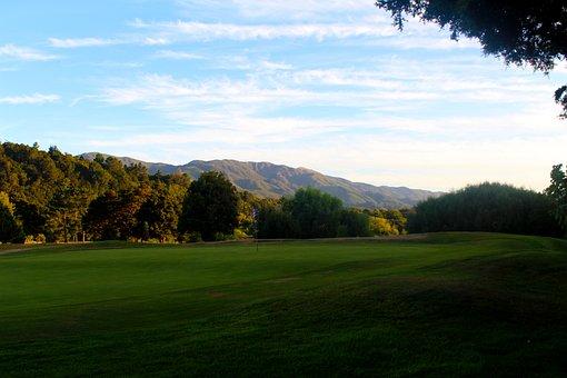 Golf Course, New Zealand, Golf, Green, Sport, Rush