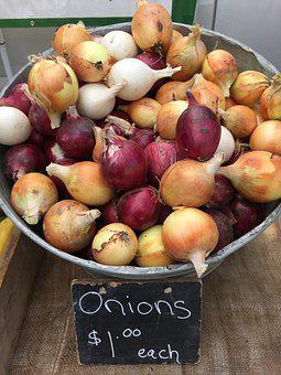 Onions, Yellow Onions, White Onions, Purple Onions