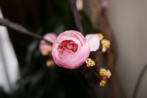 Artificial Flower, Fabric, Bokeh, Pink, Offspring