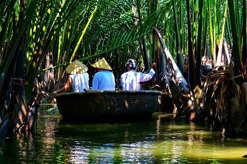Vietnam, Travel, Jungle, Water, Boat, Around Boat