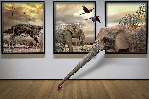 Manipulation, Savannah, Elephant, Giraffe, Animal