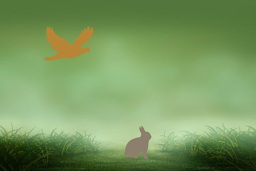 Rabbit, Eagle, Drawing, Grass, Background, Bird