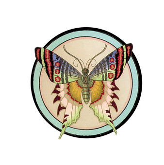 Butterfly, Vintage, Decoration, Colorful, Bugs, Insect